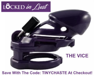 Vice Chastity Cage